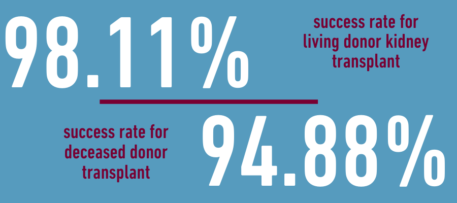 Kidney transplant: living donor vs. deceased donor success rates