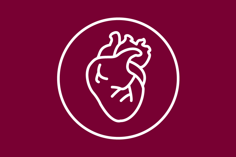 Heart illustration icon
