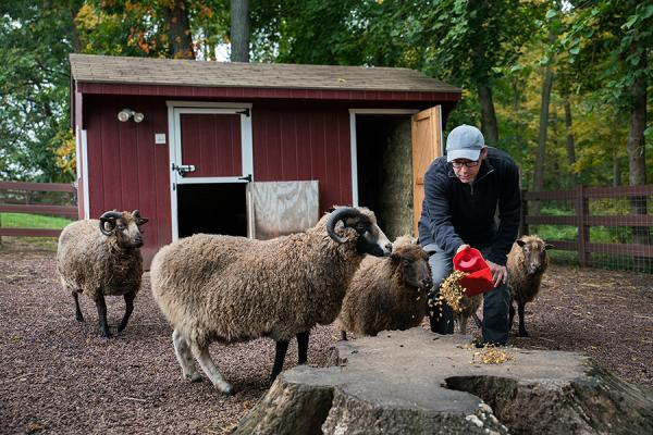 Donald feeding the animals on his farm