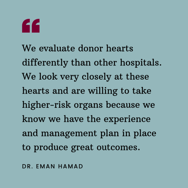 Quote from Dr. Eman Hamad about how Temple evaluates donor hearts differently than other hospitals