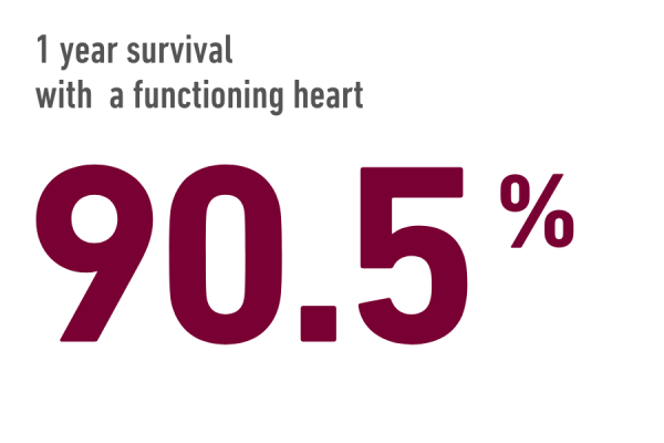 90.5% 1-year survival rate after heart transplant